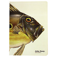 Buy Piscis John Dory Notebook A5 Online at johnlewis.com