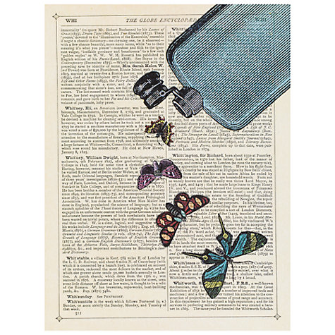 Buy House by John Lewis, Marion McConaghie - Butterfly Unframed Print, 24 x 30cm Online at johnlewis.com