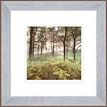 Buy Mike Shepherds- Morning Light Framed Print, 50 x 50cm Online at johnlewis.com
