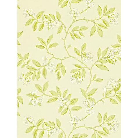 Buy Sanderson Blossom Bough Wallpaper Online at johnlewis.com