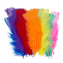 Buy John Lewis Multicoloured Feathers Online at johnlewis.com
