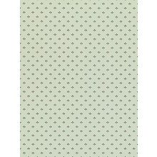 Buy Sanderson Elliot Wallpaper Online at johnlewis.com