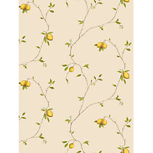 Buy Galerie Aquarius Lemons Kitchen Wallpaper, Yellow, G12081 Online at johnlewis.com