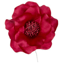 Buy Open Rose Corsage, Large Online at johnlewis.com