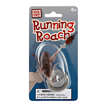 Buy Running Cockroach Online at johnlewis.com