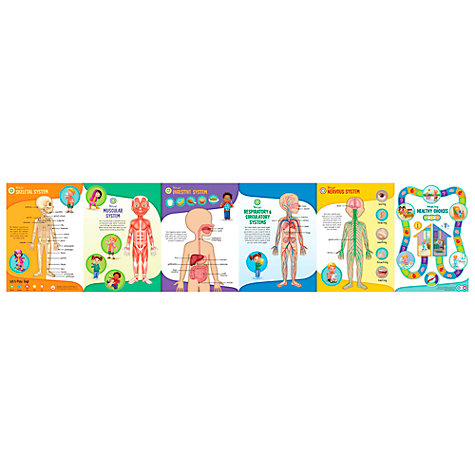 Buy LeapFrog Tag Human Body Chart Online at johnlewis.com