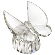 Buy Waterford Crystal Butterfly Collectible Online at johnlewis.com