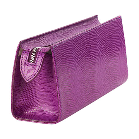 Buy Aspinal of London Brush Case Online at johnlewis.com