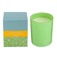 Buy John Lewis Bath & Body Bay Leaf and Wheat Grass Candle, 175g Online at johnlewis.com
