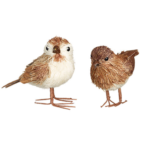 Buy John Lewis Brush Bird, Brown, Assorted Online at johnlewis.com