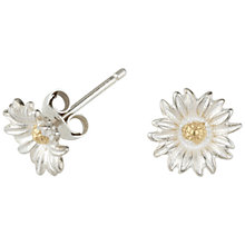 Buy Dower & Hall Daisy Stud Earrings Online at johnlewis.com