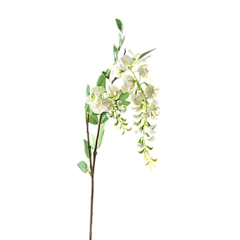 Buy Peony Wisteria Stem Online at johnlewis.com