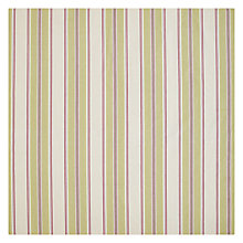 Buy John Lewis Botanist Stripe Fabric Online at johnlewis.com