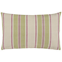 Buy John Lewis Botanist Stripe Cushion Online at johnlewis.com