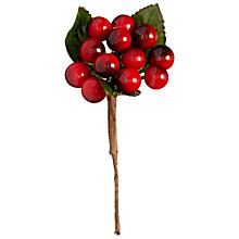 Buy John Lewis Large Berry Pick Online at johnlewis.com