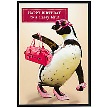 Buy Pigment Classy Penguin Birthday Card Online at johnlewis.com