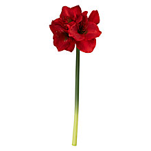 Buy Floralsilk Artificial Flower Stem, Red Amaryllis Online at johnlewis.com