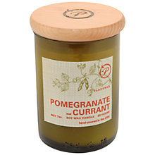 Buy Paddywax Ecogreen Pomegranate and Currant Scented Candle Online at johnlewis.com