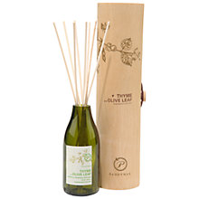 Buy Paddywax Ecogreen Thyme and Olive Leaf Diffuser, 120ml Online at johnlewis.com