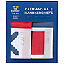 Nick Munro RNLI The Signs of the Sea Flag Hankerchiefs, Pack of 2