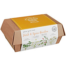 Buy Kew Gardens World Spices Grow Box Online at johnlewis.com
