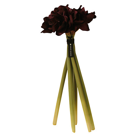 Buy Hervé Gambs Amaryllis Bouquet, Purple, H68cm Online at johnlewis.com