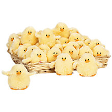 Buy Teddykompaniet Chirping Chick Toy Online at johnlewis.com
