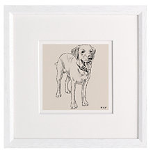 Buy Letterfest Personalised Pet Illustration, White Frame, 25 x 25cm Online at johnlewis.com