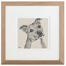 Buy Letterfest Personalised Pet Illustration, 25 x 25cm Online at johnlewis.com