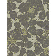 Buy Harlequin Identity Passion Wallpaper Online at johnlewis.com