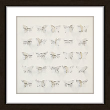 Buy Butterfly Music Framed 3D Laser Cut, 40 x 40cm Online at johnlewis.com