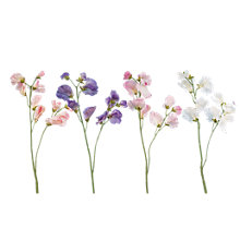 Buy Sweet Pea Spray, Assorted Online at johnlewis.com