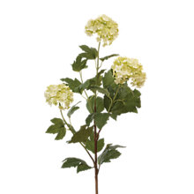 Buy Floralsilk Viburnum Spray Online at johnlewis.com