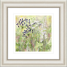 Buy Catherine Stephenson - Agapanthus Grasses 1 Framed Print, 50 x 50cm Online at johnlewis.com