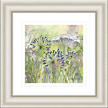 Buy Catherine Stephenson - Agapanthus Grasses 2 Framed Print, 50 x 50cm Online at johnlewis.com