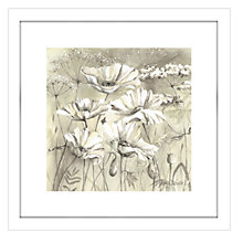 Buy Catherine Stephenson - Neutral White Poppy Pods 2 Framed Print, 44 x 44cm Online at johnlewis.com
