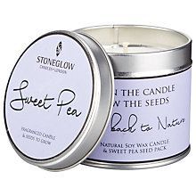 Buy Stoneglow Burn & Sow Sweet Pea Candle and Seeds Online at johnlewis.com