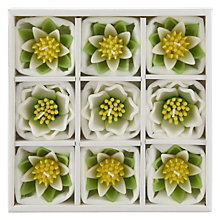 Buy John Lewis Floating Waterlily Candles, White, Medium, Pack of 9 Online at johnlewis.com