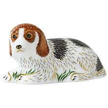 Buy Royal Crown Derby Belle Lying Puppy Paperweight Online at johnlewis.com