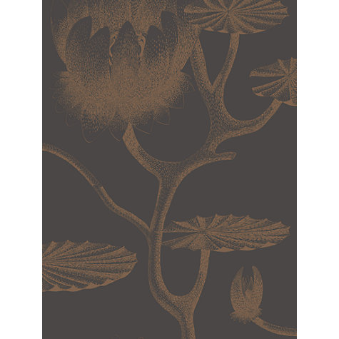 Buy Cole & Son Lily Wallpaper Online at johnlewis.com