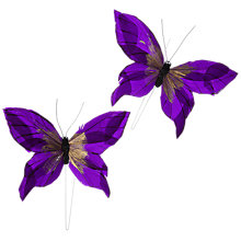 Buy John Lewis Butterfly Accessory, Pack of 2 Online at johnlewis.com