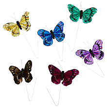 Buy John Lewis Butterfly Accessories, Pack of 6, Multi Online at johnlewis.com