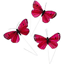 Buy John Lewis Butterfly Accessory, Pack of 3 Online at johnlewis.com