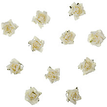 Buy John Lewis Paper Rose Heads, Pack of 20 Online at johnlewis.com