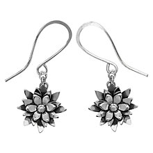 Buy Linda Macdonald Lily Pond Sterling Silver Hook Earrings Online at johnlewis.com
