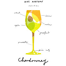 Buy House by John Lewis, Ana Petrak - Wine Anatomy: Chardonnay Unframed Print, 30 x 24cm Online at johnlewis.com