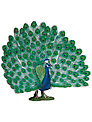 Schleich Wild Animals: Peacock