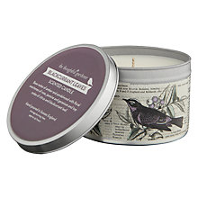 Buy Thoughtful Gardener Blackcurrant Leaves Scented Candle Online at johnlewis.com