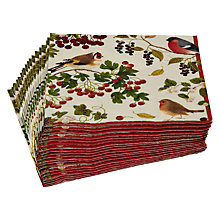 Buy Caspari Ltd Winter Birds Disposable Cocktail Napkins, Pack of 20 Online at johnlewis.com