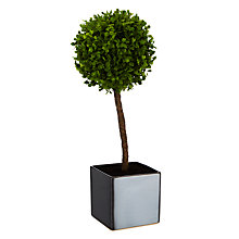 Buy Boxwood Ball Artificial Plant in a Black Cube Online at johnlewis.com